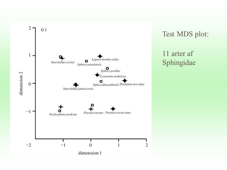 Test MDS plot: 11 arter af Sphingidae