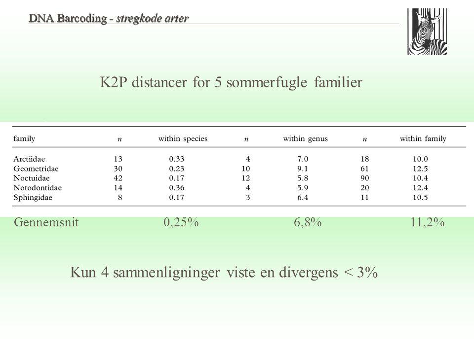 K2P distancer for 5 sommerfugle familier