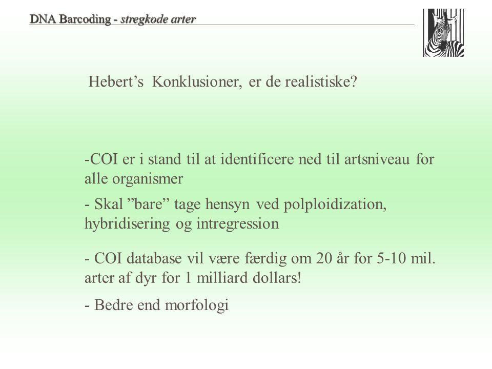 Hebert's Konklusioner, er de realistiske