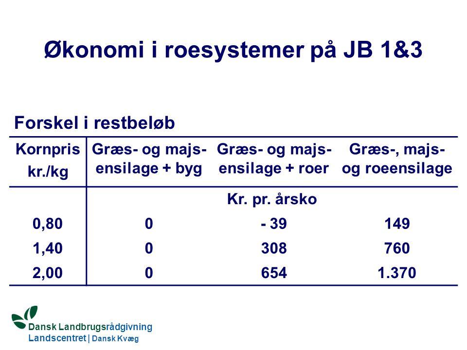 Økonomi i roesystemer på JB 1&3