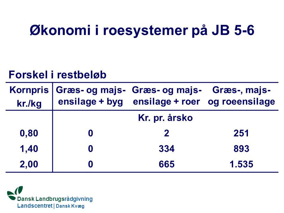 Økonomi i roesystemer på JB 5-6