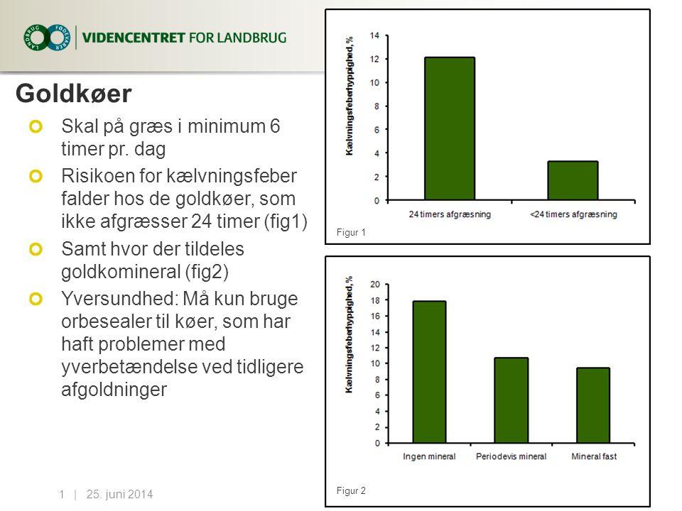 Goldkøer Skal på græs i minimum 6 timer pr. dag