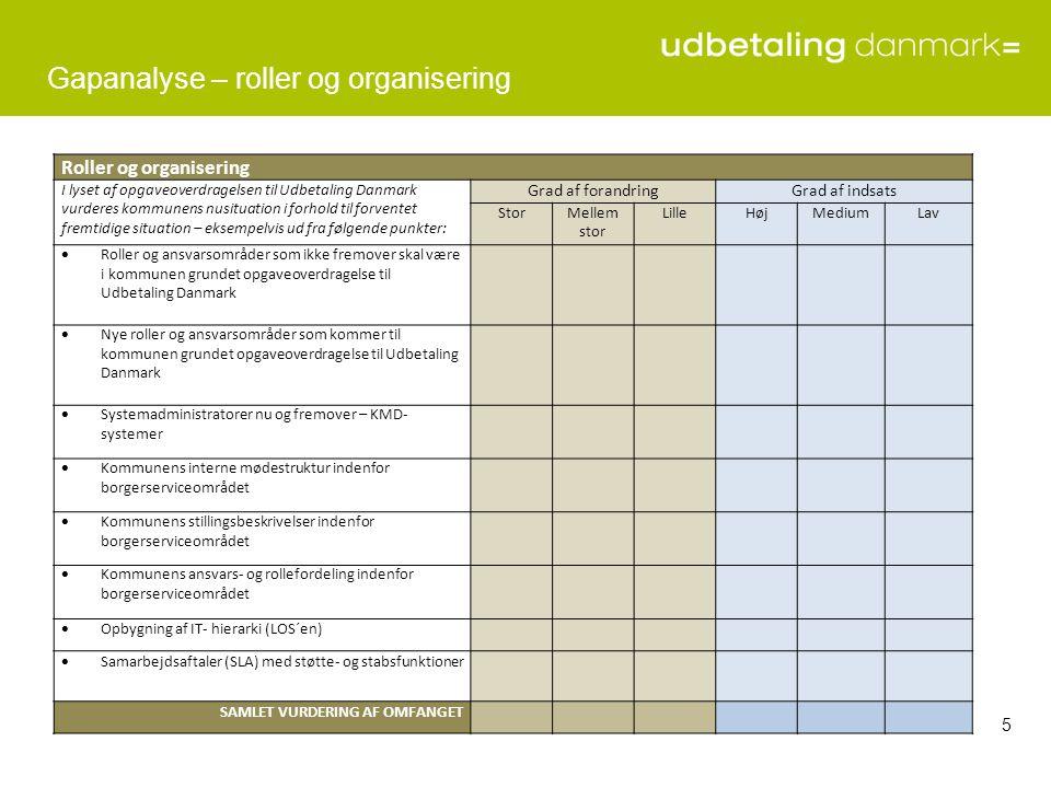 Gapanalyse – roller og organisering
