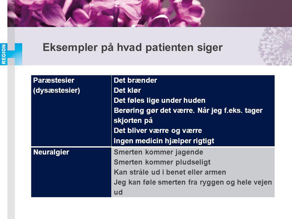 Eksempler på hvad patienten siger