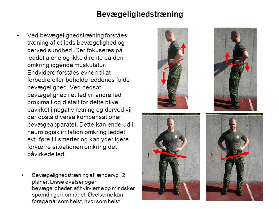 Bevægelighedstræning