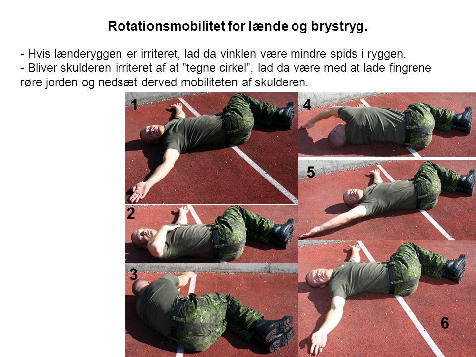 Rotationsmobilitet for lænde og brystryg.