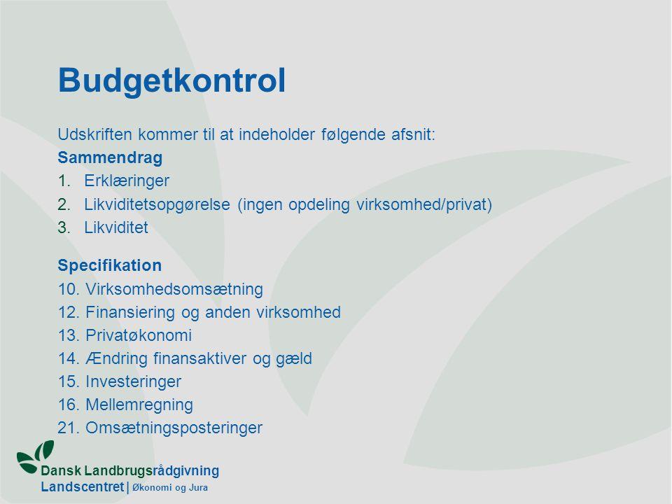 Budgetkontrol Udskriften kommer til at indeholder følgende afsnit: