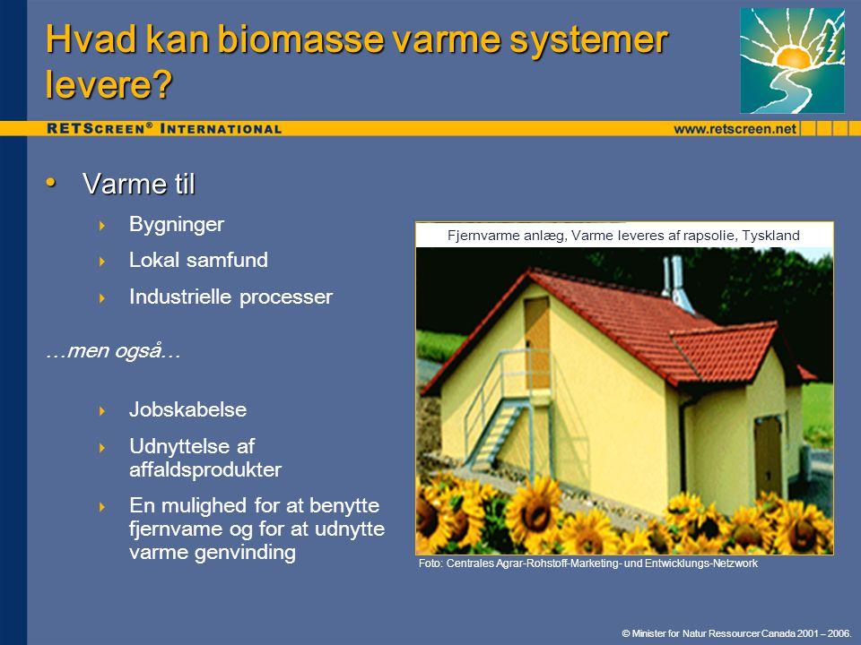 Hvad kan biomasse varme systemer levere
