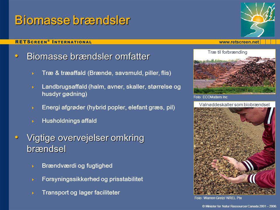 Valnøddeskaller som biobrændsel