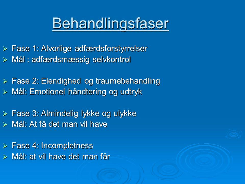 Behandlingsfaser Fase 1: Alvorlige adfærdsforstyrrelser