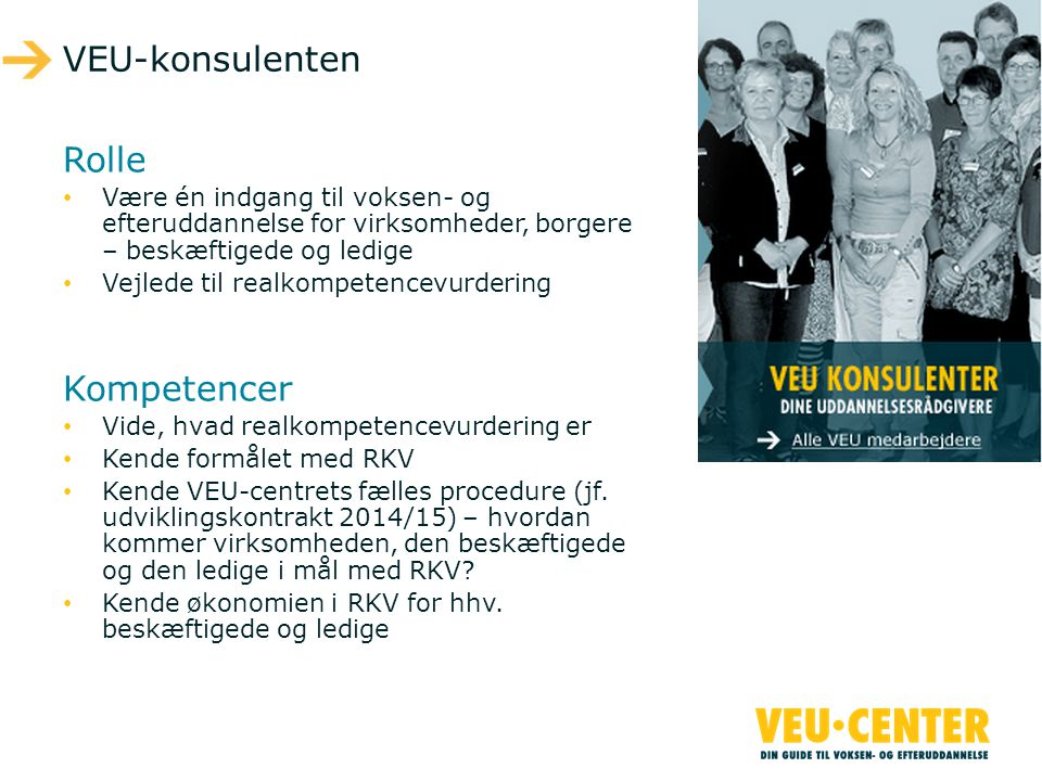 VEU-konsulenten Rolle Kompetencer