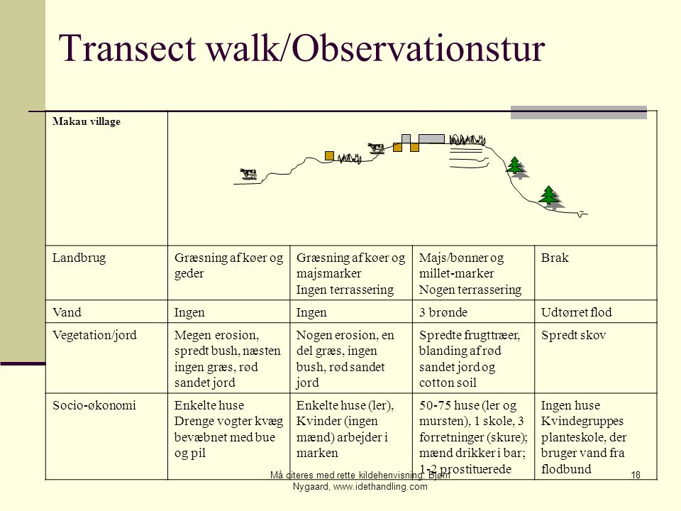 Transect walk/Observationstur