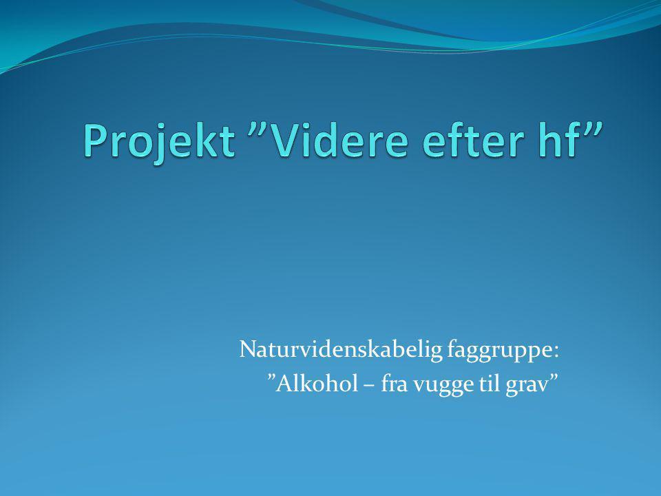 Projekt Videre efter hf