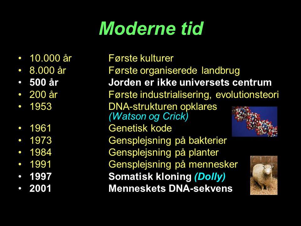 Moderne tid 10.000 år Første kulturer