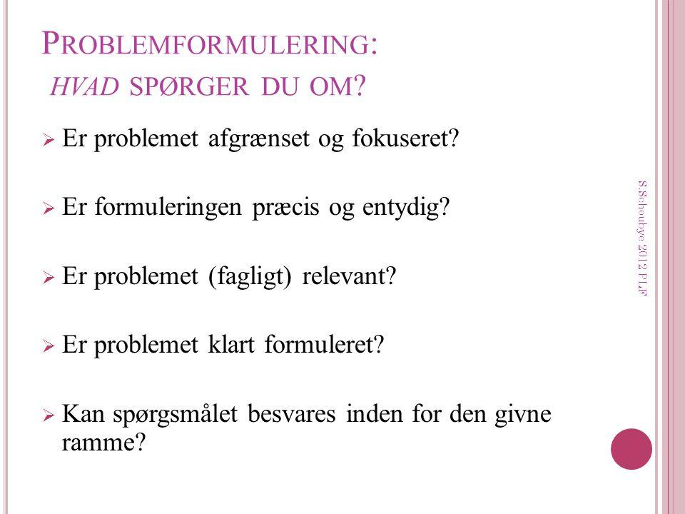 Problemformulering: hvad spørger du om