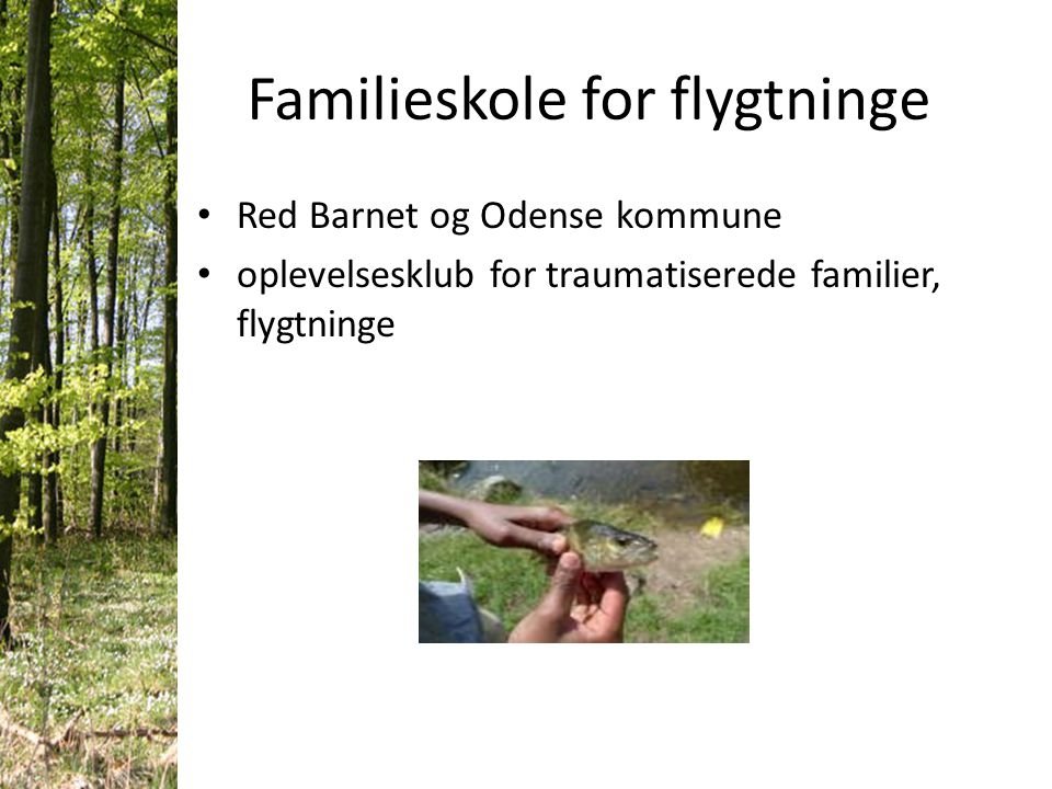 Familieskole for flygtninge