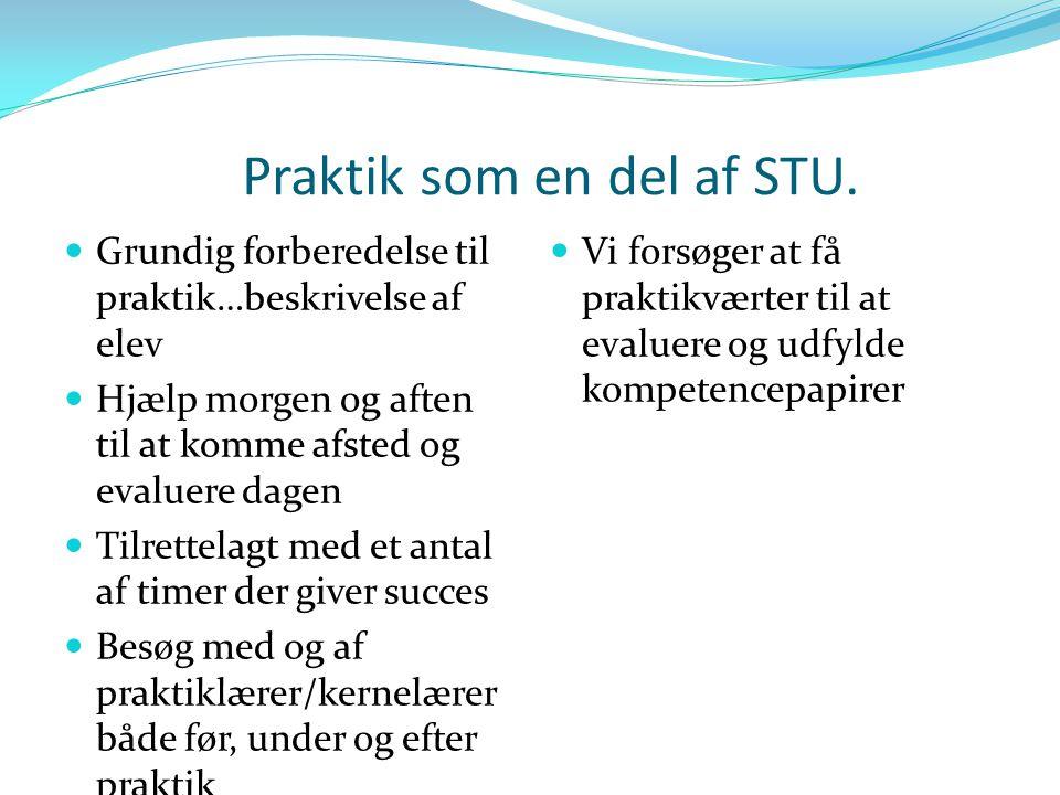 Praktik som en del af STU.