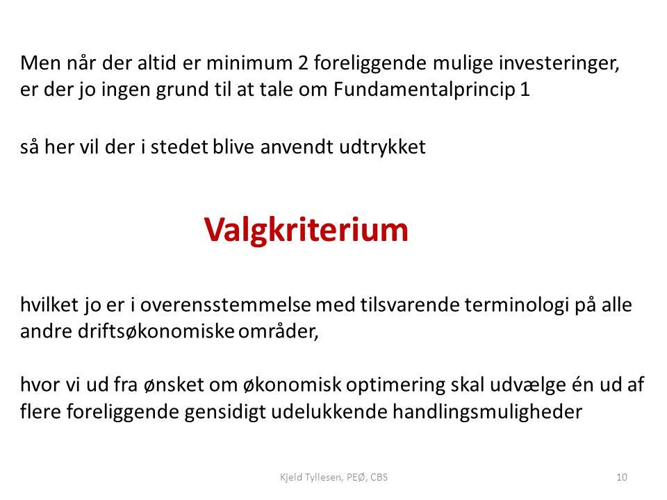 Men når der altid er minimum 2 foreliggende mulige investeringer, er der jo ingen grund til at tale om Fundamentalprincip 1