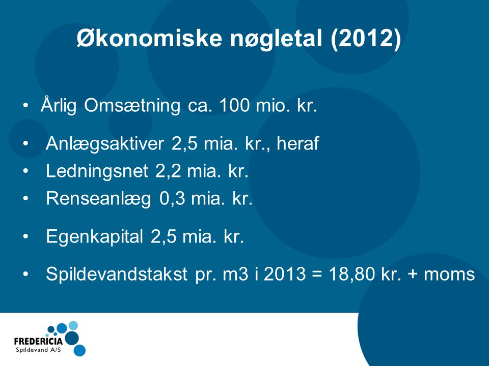 Økonomiske nøgletal (2012)