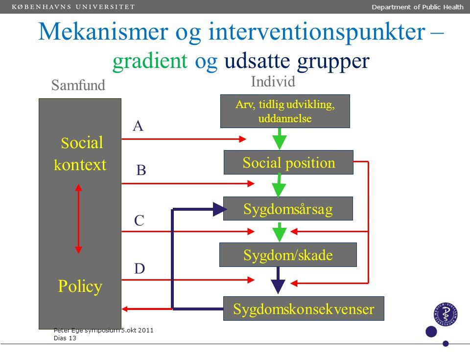 Mekanismer og interventionspunkter –gradient og udsatte grupper
