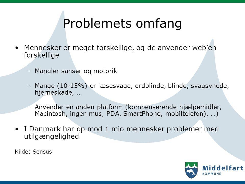 Problemets omfang Mennesker er meget forskellige, og de anvender web'en forskellige. Mangler sanser og motorik.