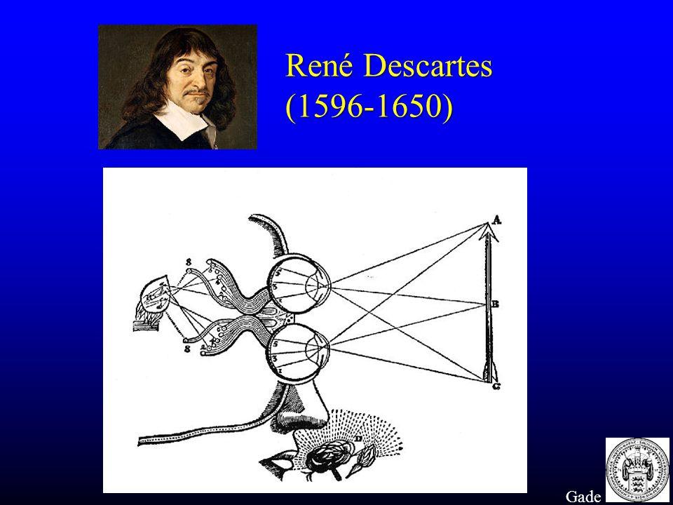René Descartes (1596-1650) Gade