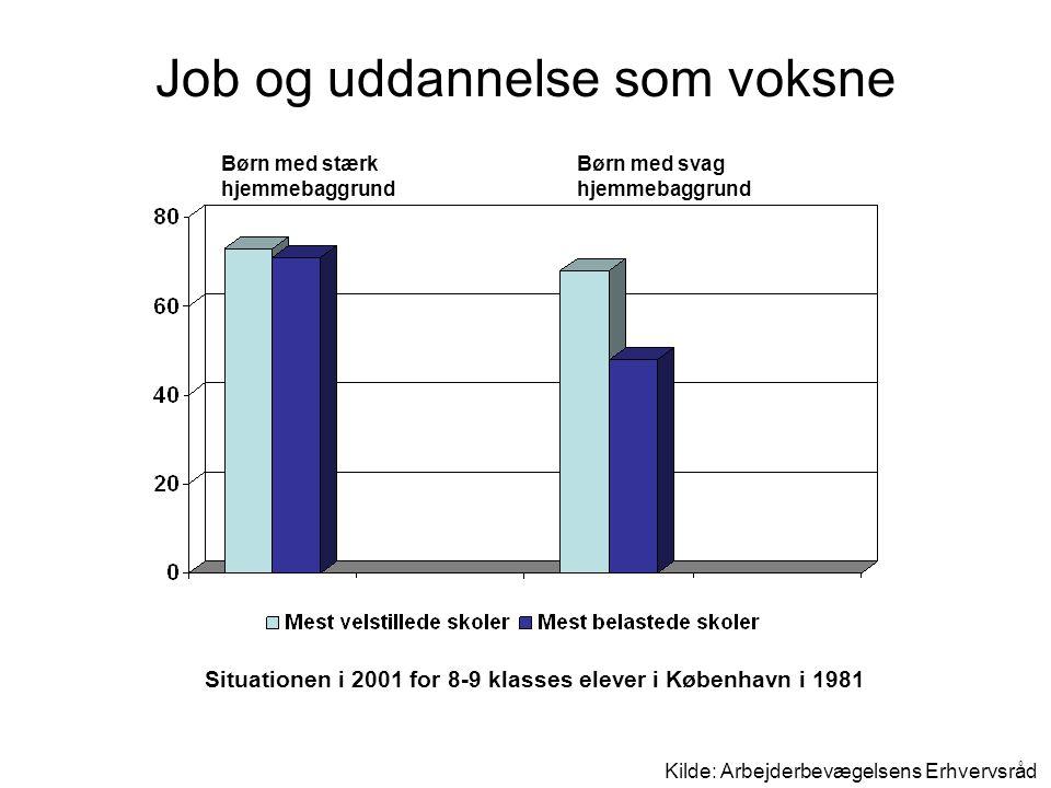 Job og uddannelse som voksne