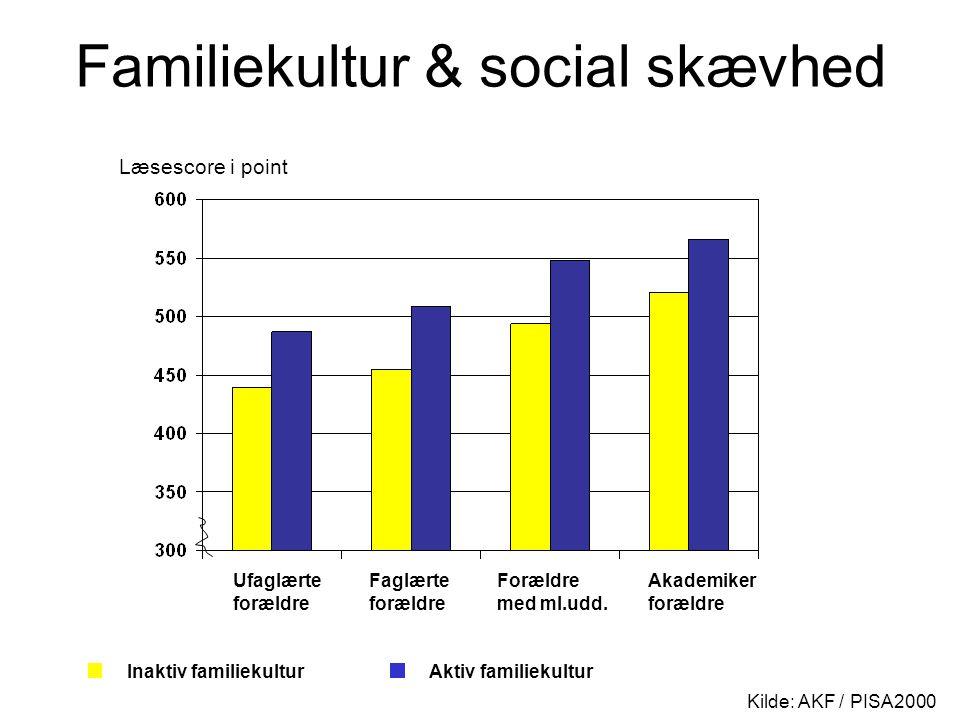 Familiekultur & social skævhed