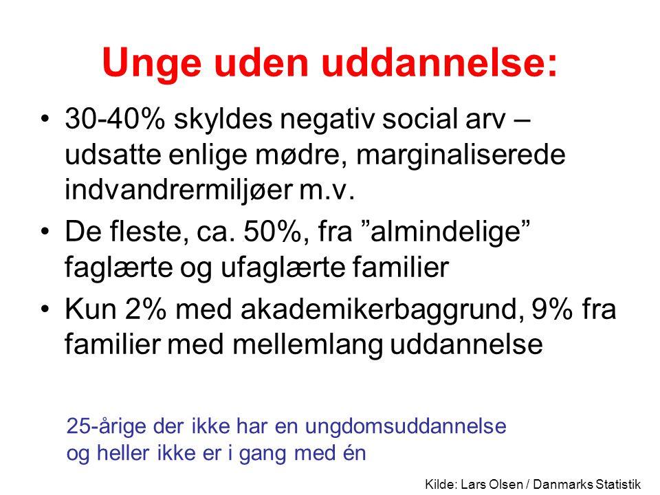 Unge uden uddannelse: 30-40% skyldes negativ social arv – udsatte enlige mødre, marginaliserede indvandrermiljøer m.v.