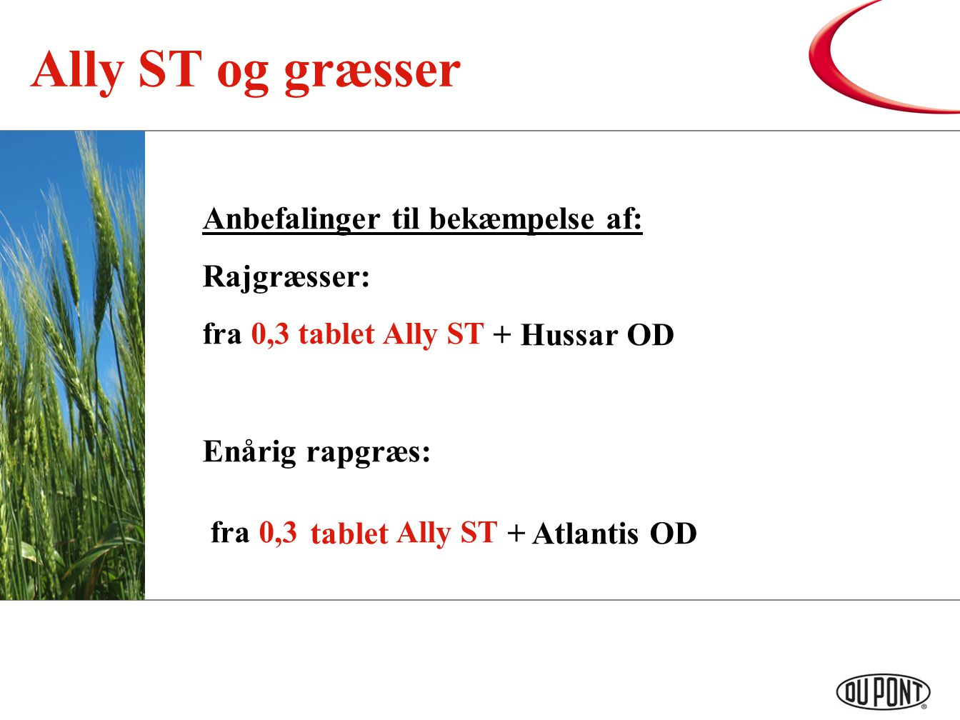 Ally ST og græsser fra 0,3 tablet Ally ST + Hussar OD