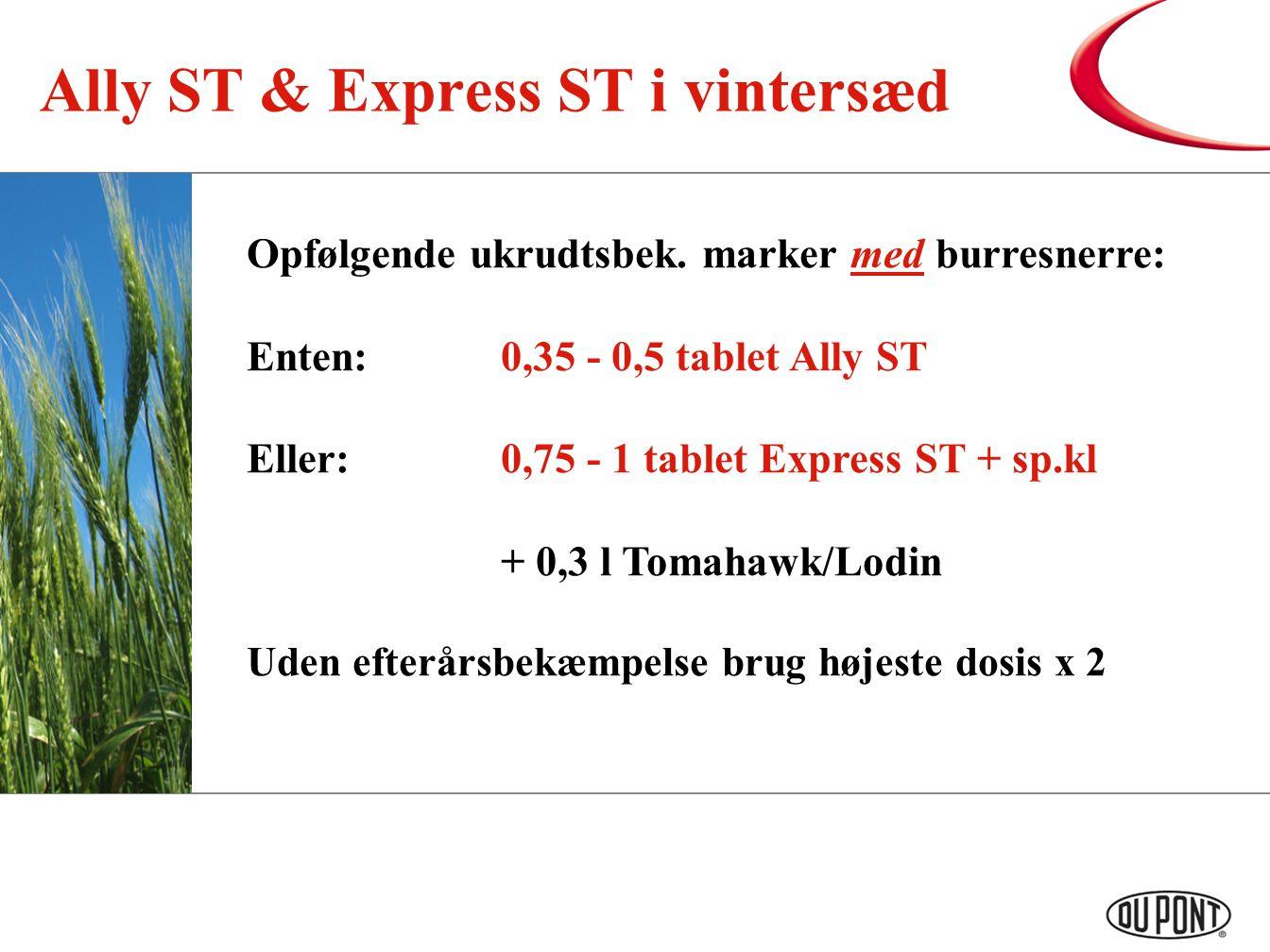 Ally ST & Express ST i vintersæd