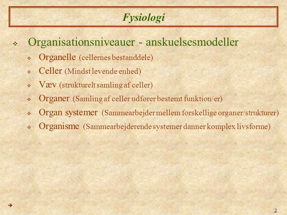 Organisationsniveauer - anskuelsesmodeller