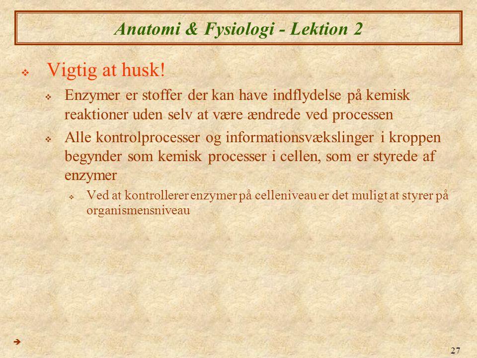 Anatomi & Fysiologi - Lektion 2