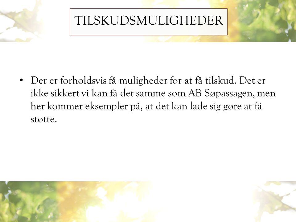 TILSKUDSMULIGHEDER