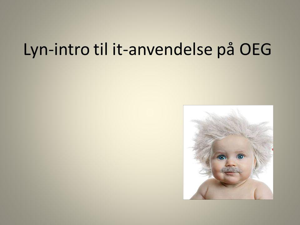 Lyn-intro til it-anvendelse på OEG
