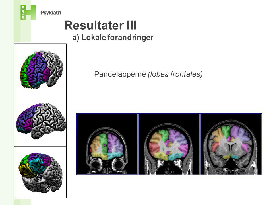 Resultater III a) Lokale forandringer Pandelapperne (lobes frontales)