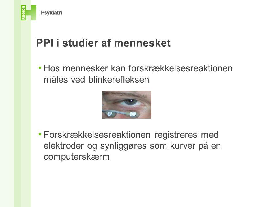 PPI i studier af mennesket