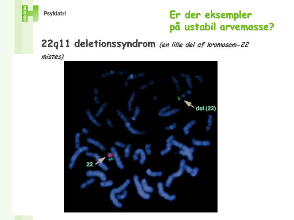 Er der eksempler på ustabil arvemasse 22q11 deletionssyndrom (en lille del af kromosom-22 mistes)