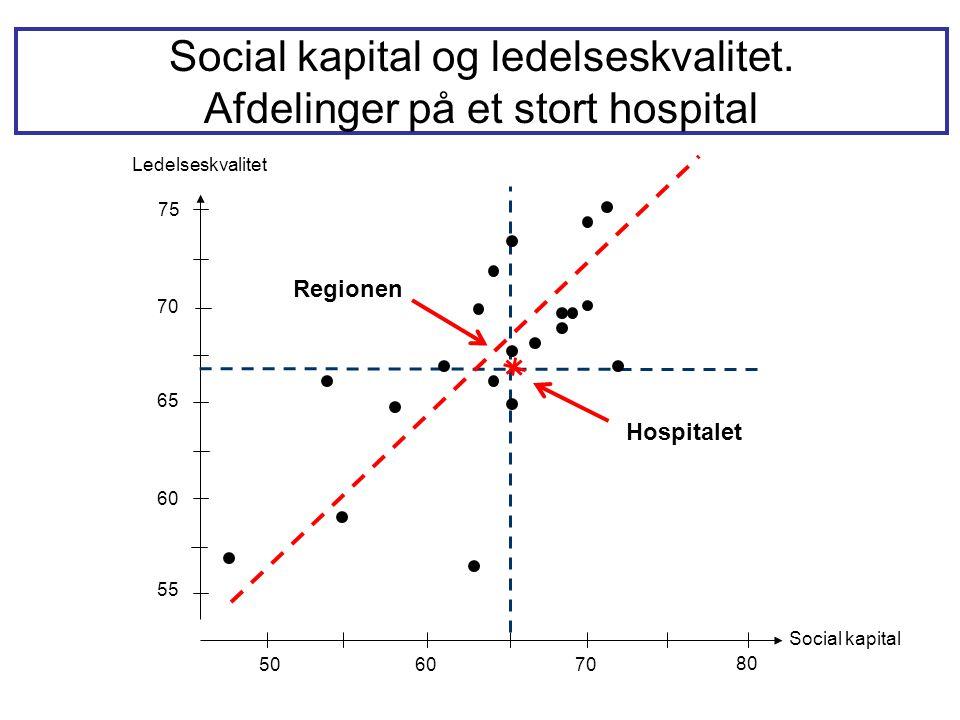 Social kapital og ledelseskvalitet. Afdelinger på et stort hospital
