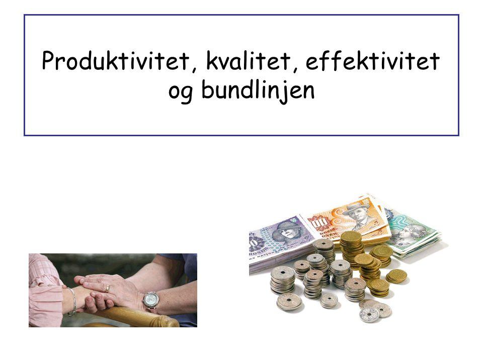 Produktivitet, kvalitet, effektivitet og bundlinjen