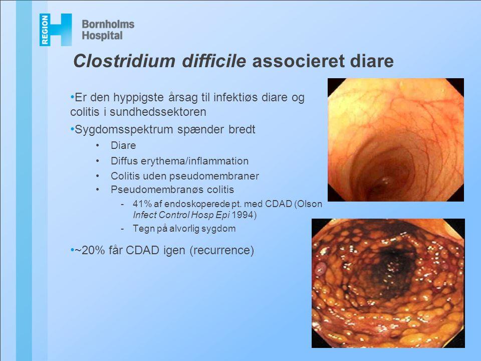 Clostridium difficile associeret diare