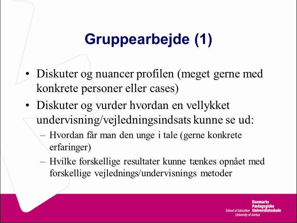 Gruppearbejde (1) Diskuter og nuancer profilen (meget gerne med konkrete personer eller cases)