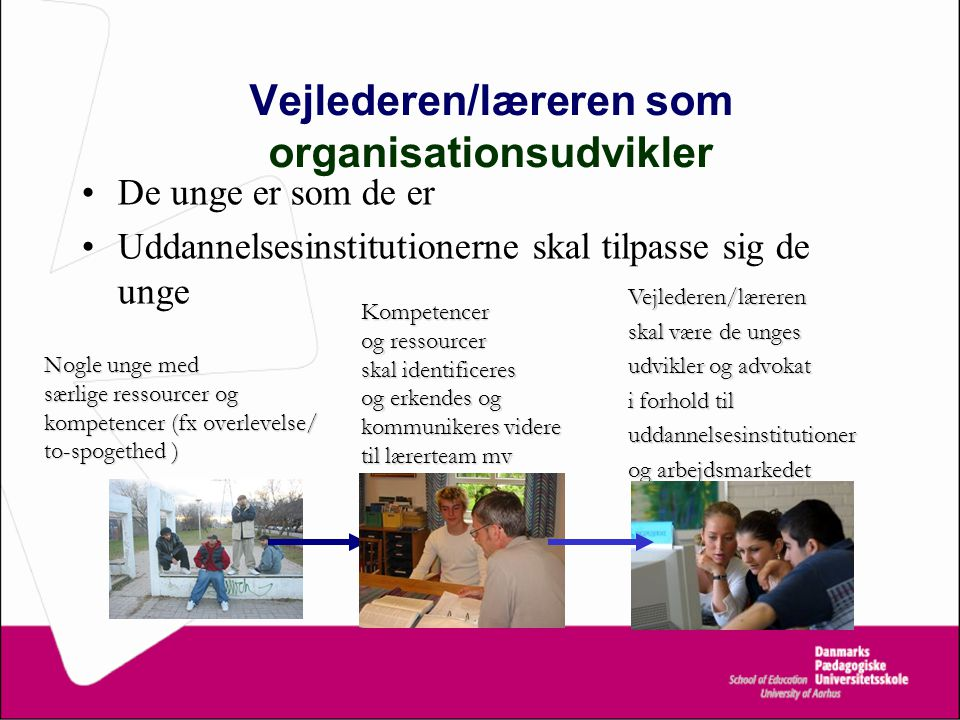 Vejlederen/læreren som organisationsudvikler