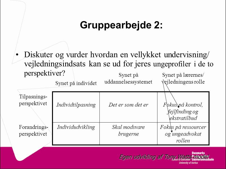 Gruppearbejde 2: Diskuter og vurder hvordan en vellykket undervisning/ vejledningsindsats kan se ud for jeres ungeprofiler i de to perspektiver