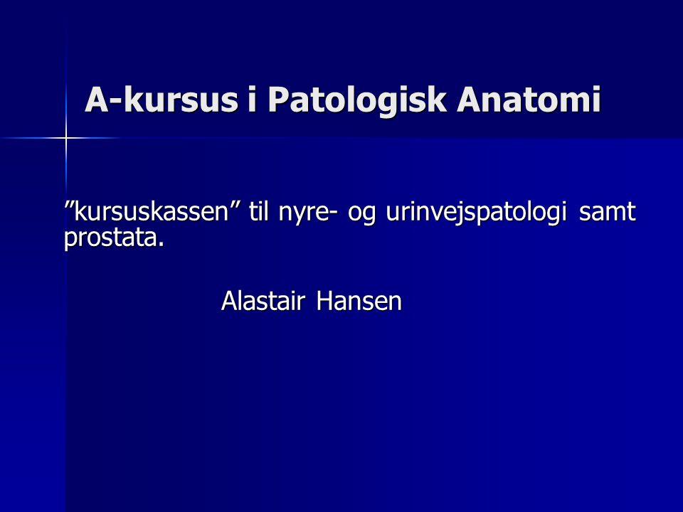 A-kursus i Patologisk Anatomi