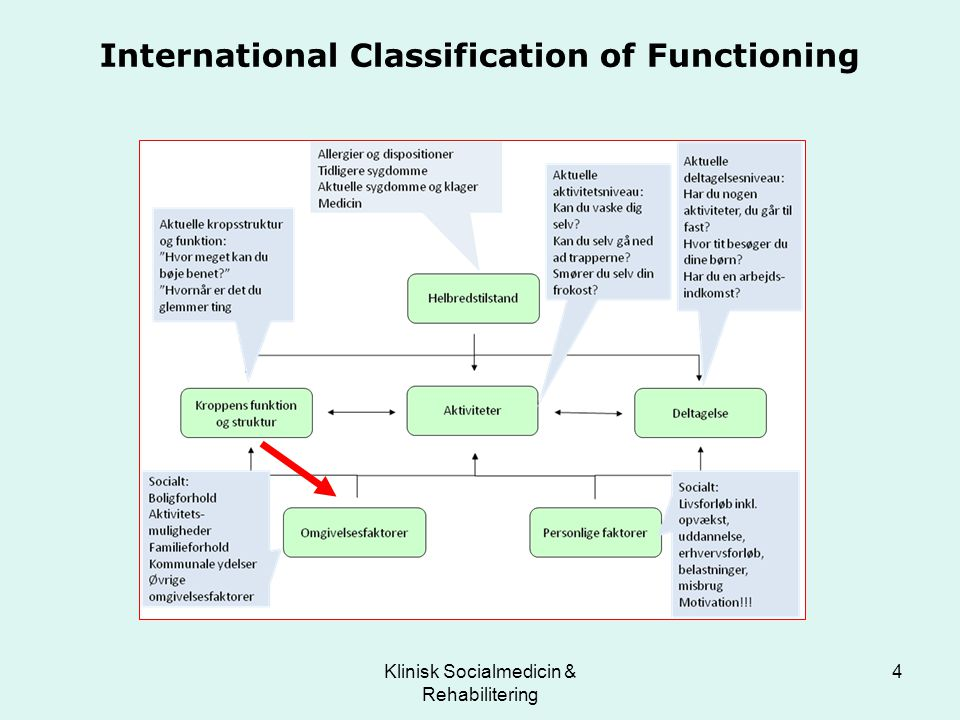 International Classification of Functioning