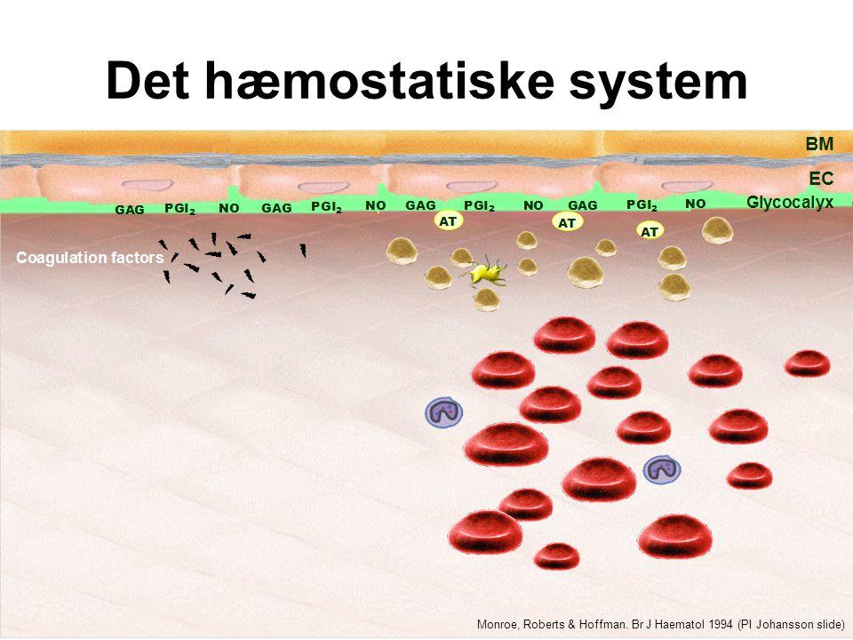 Det hæmostatiske system