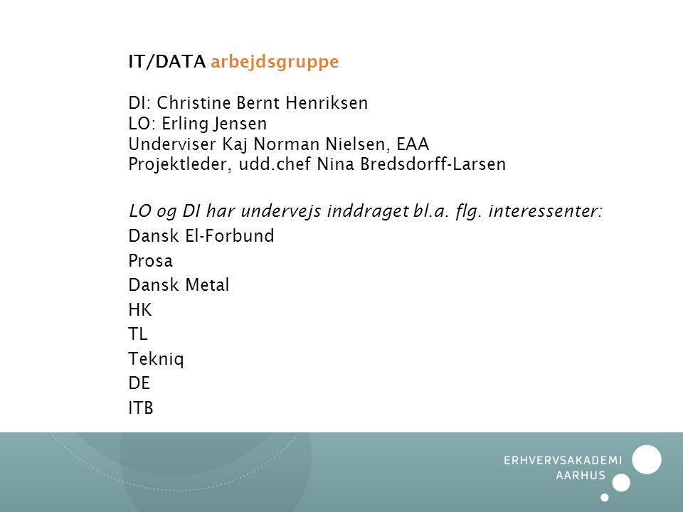 IT/DATA arbejdsgruppe DI: Christine Bernt Henriksen LO: Erling Jensen Underviser Kaj Norman Nielsen, EAA Projektleder, udd.chef Nina Bredsdorff-Larsen