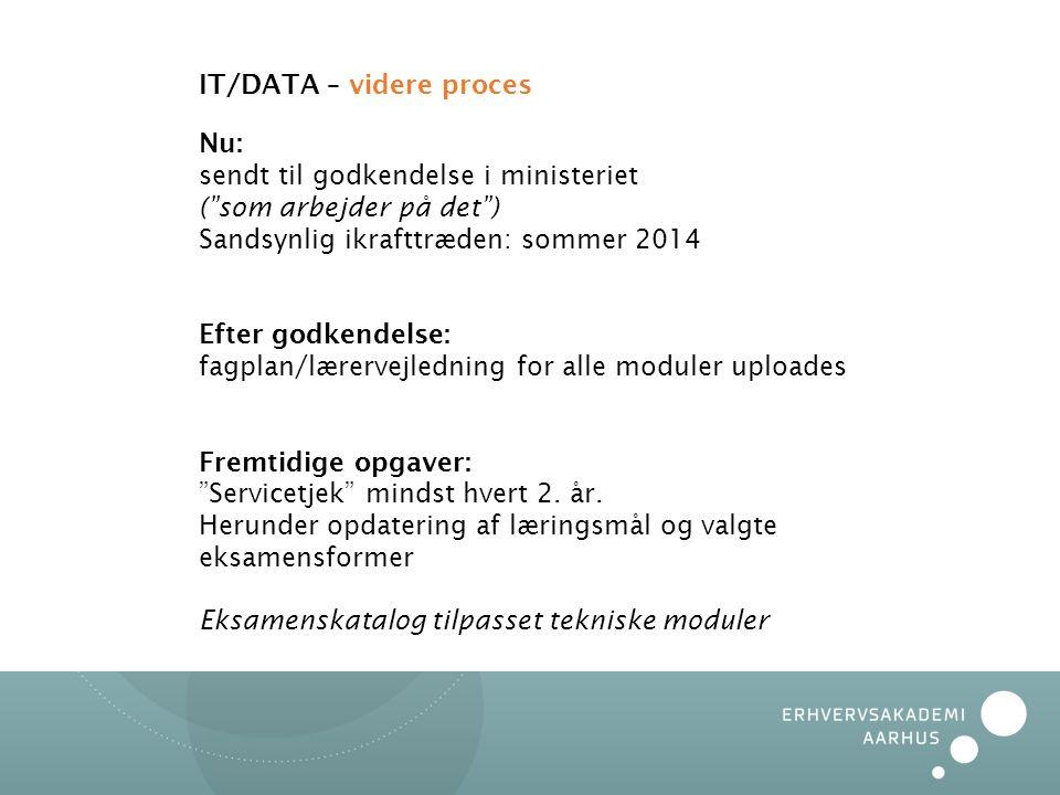 IT/DATA – videre proces