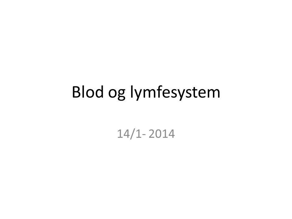Blod og lymfesystem 14/1- 2014
